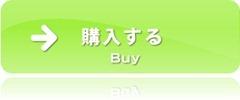 購入する[10]