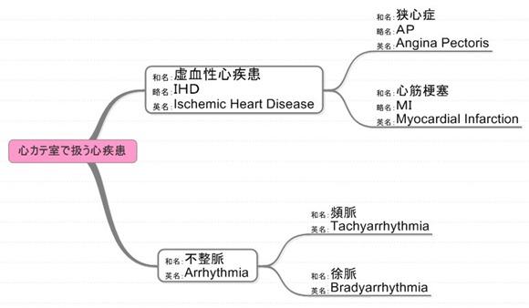 虚血性心疾患 不整脈